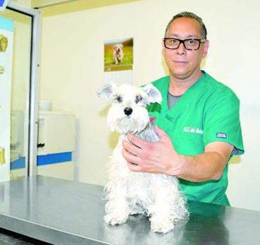 Todo para tu mascota sólo en Matus Clínica Hospital